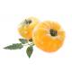 Graines de Tomate Ananas AB