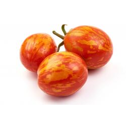 Graines de Tomate Zebra rouge AB