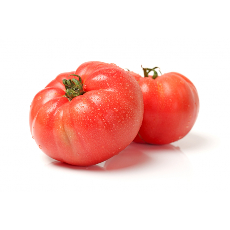 Graines de Tomate Sudduth's strain AB