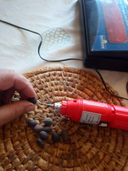 Scarification de la graine de Nelumbo avec une petite mèche